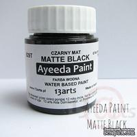 Краска 13arts - Ayeeda Paint - Matte Black