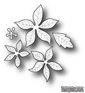 Нож от Poppystamps - Small Blooming Poinsettia