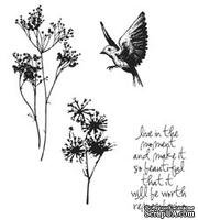 Резиновые штампы от Stampers Anonymous - Tim Holtz Cling Mounted Stamp Sets Nature`s Moments Set, 4 шт.