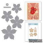 Ножи от Spellbinders - Cinch and Go Poinsettia - ScrapUA.com